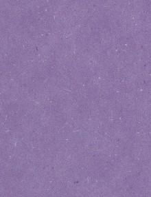 csm_PURline_eco_PUR_Levante_Lavender_Field_PB00012LE_CMYK_681a436758
